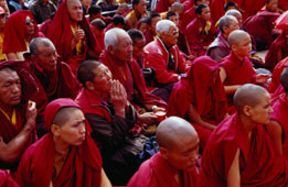 L-11-1173-nuns_and_monks_at_dalai_lama_sermon_in_choglamsar__ladakh__india-Z000U279.jpg
