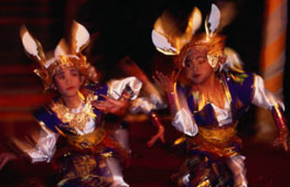 L-11-1176-kelinci_rabbit_dance_performed_for_tourists__peliatan__indonesia-Z000UCGT.jpg