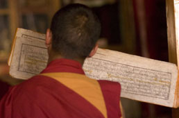 L-17-1714-tibetan_buddhist_monk_praying_and_reciting_from_ancient_holy_script-Z00D1QZC.jpg