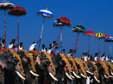L-20-2098-men_riding_decorated_elephants_at_annual_pooram_festival__thrissur__india-Z00D2RG8.jpg