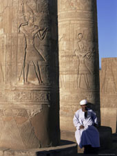 L-21-2164-pillars_in_the_temple_of_sobek_and_horus__kom_ombo__egypt__north_africa__africa-Z00DCALL.jpg