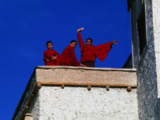 L-21-2190-monks_on_rooftop_of_monastary__tikse__jammu_and_kashmir__india-Z00DAFQM.jpg